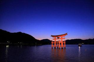 大鳥居のライトアップ.jpg